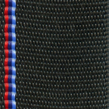 Specialty Webbing Colors Cover