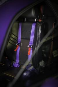 2008-2019 Dodge Challenger, Ninja Harness